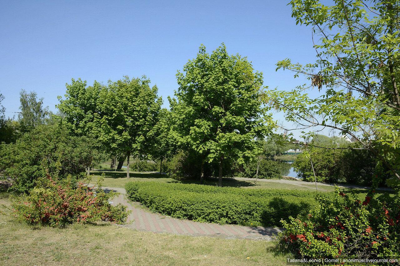 Любенское озеро. 5 микрорайон. Гомель