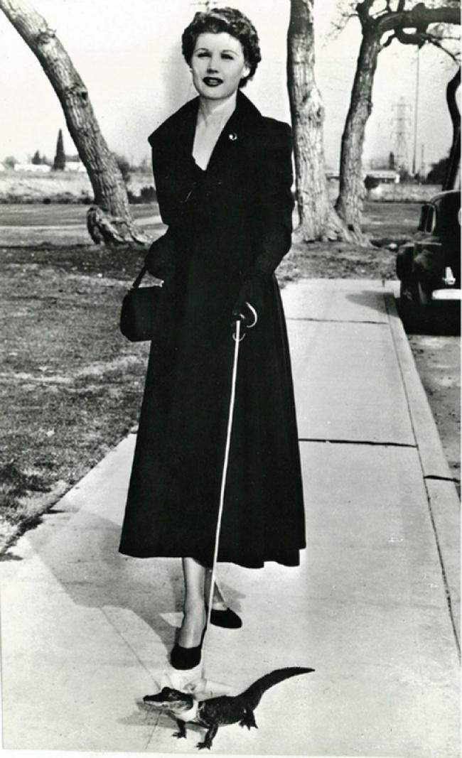 Дама с крокодильчиком, 1950 год.