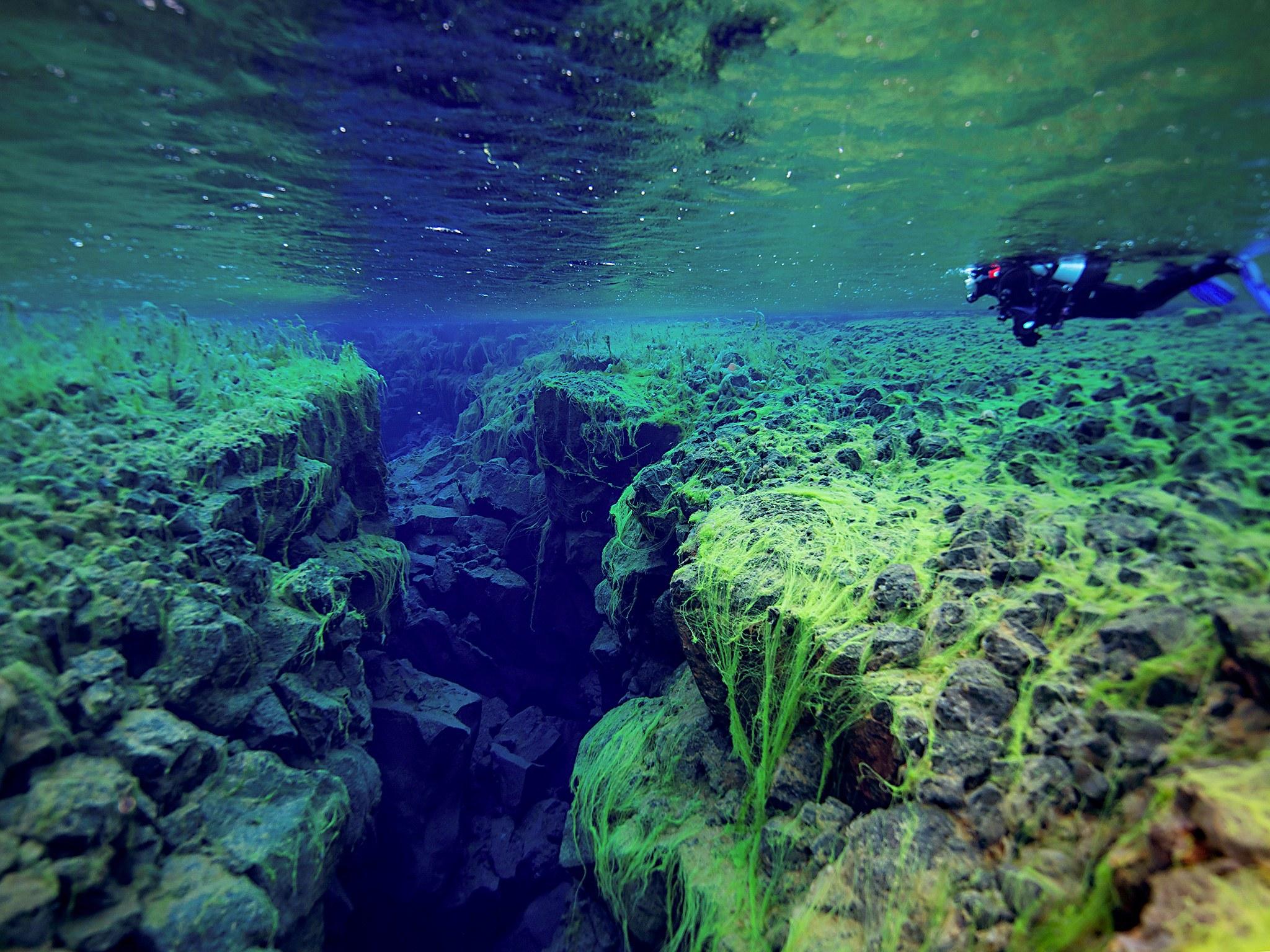 10. Подводное ущелье Сифра, Исландия. Подводное ущелье Сифра, расположенное на территории исландског