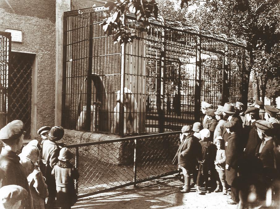 Медвежатник, 1912 год. Фото: архив Московского зоопарка. В 90-е ситуация изменилась, началась реконс