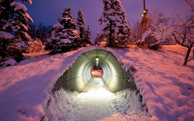 © wilde  Через этот удобный тоннель обитатели леса могут влюбое время пройти под скоростной д
