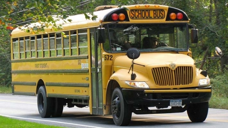 Автобус сдетьми вСША врезался вдерево из-за оленя