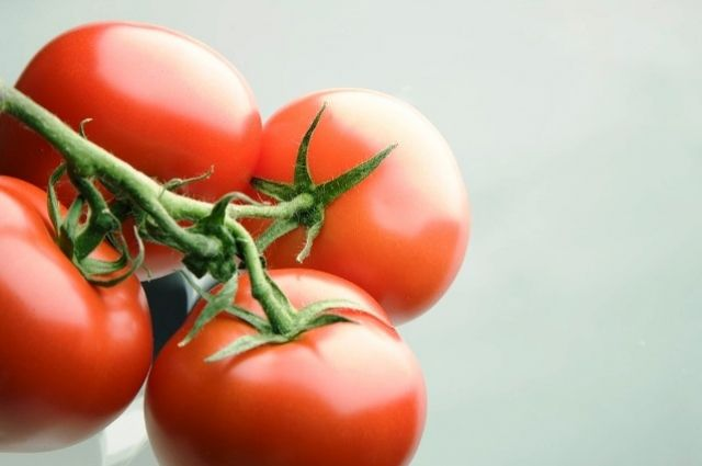 Российская Федерация подготовила документ, снимающий ограничения наввоз турецких овощей