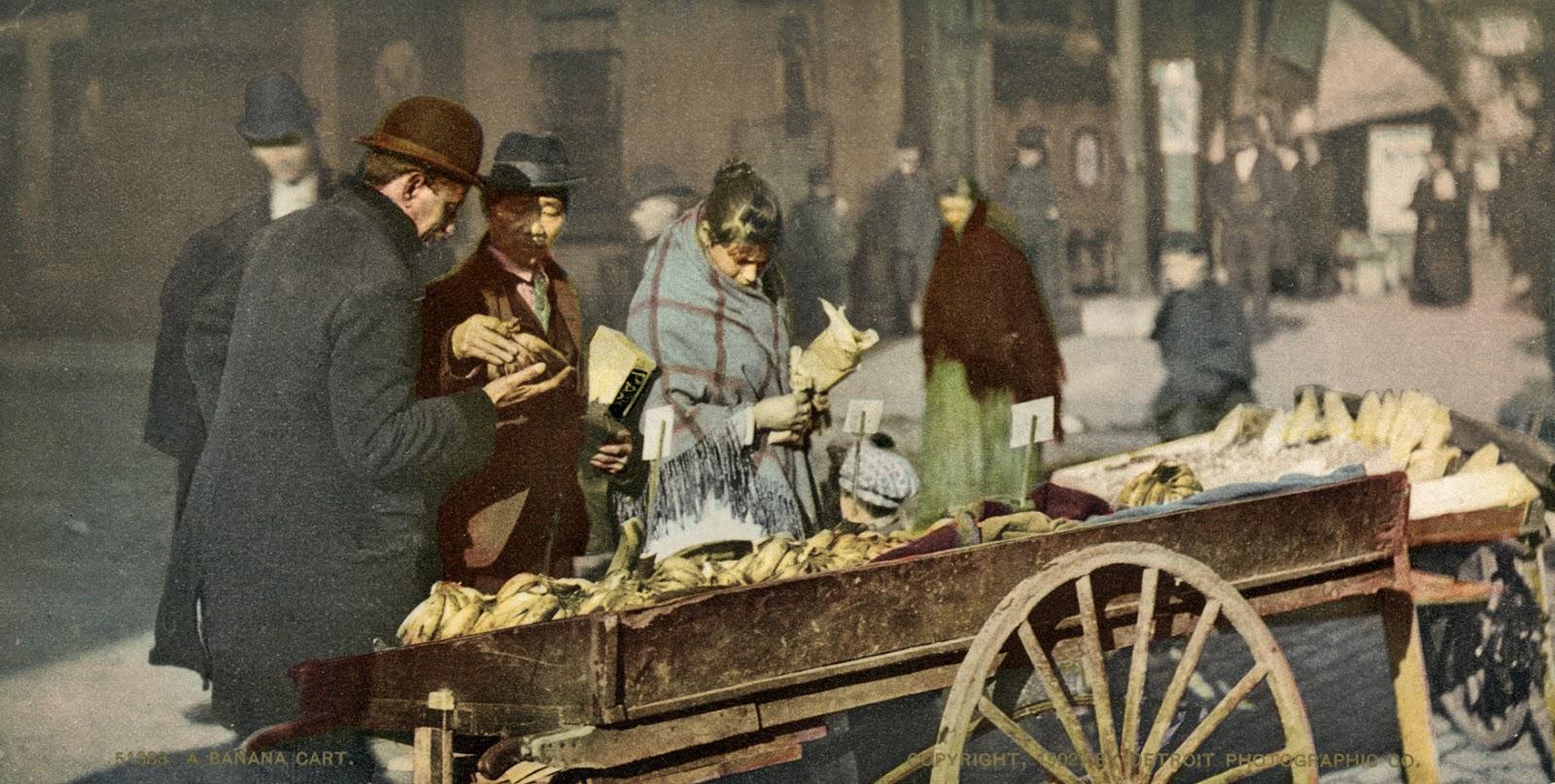 A banana cart, ca. 1902.jpg