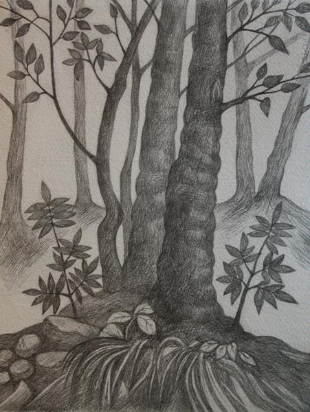 графика_деревья.JPG