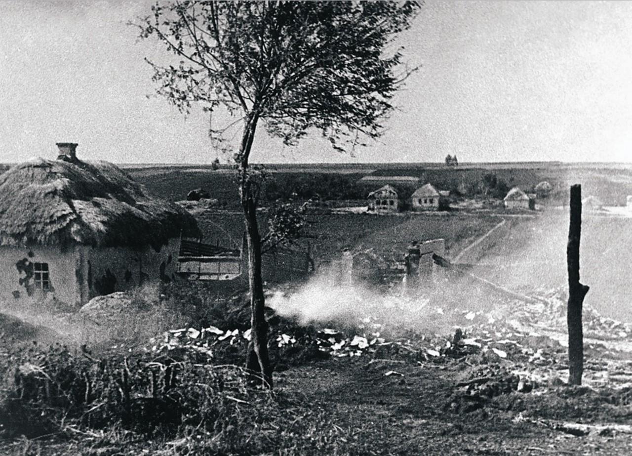 1943. Военные действия в районе Курской дуги