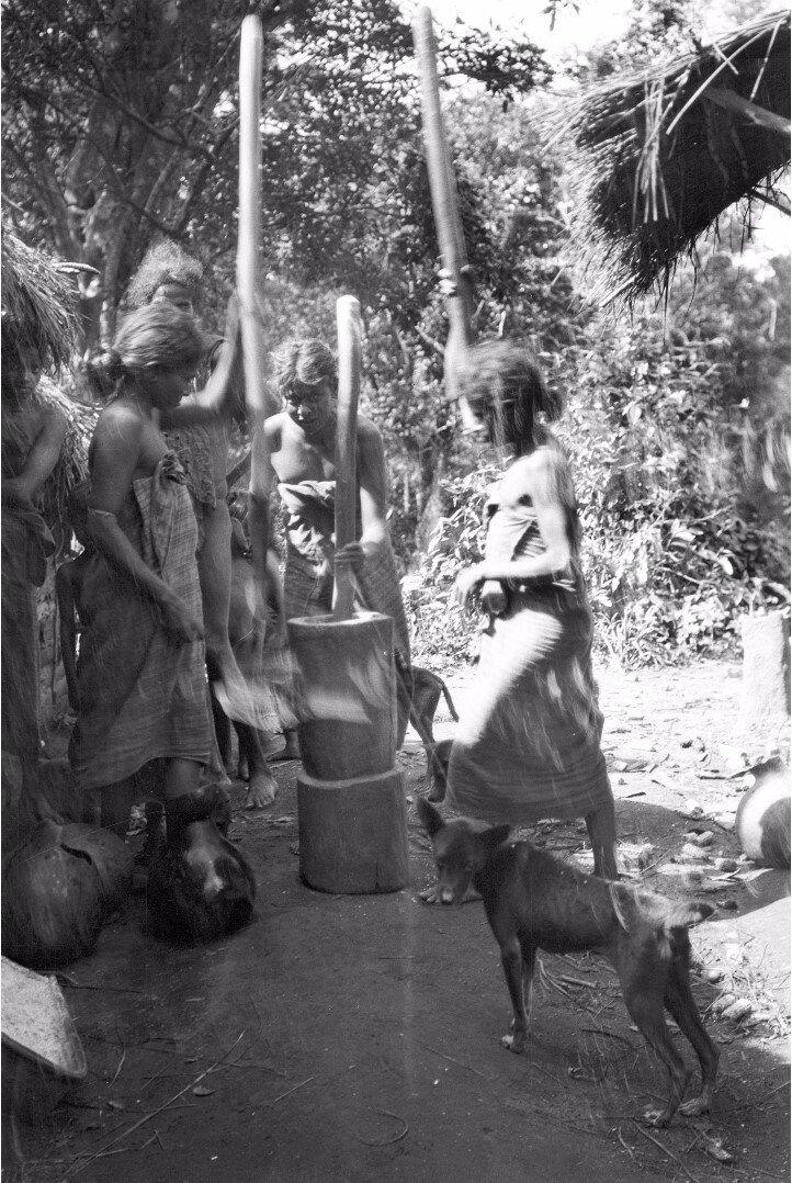 123. Хенебедде. Женщины дробят рис