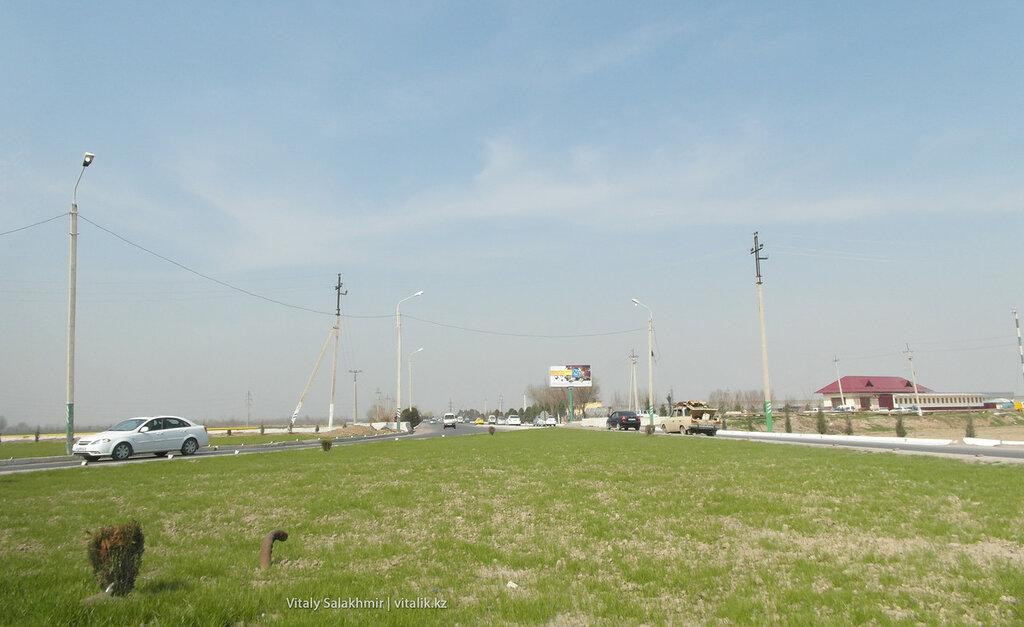 Трава в марте Узбекистан