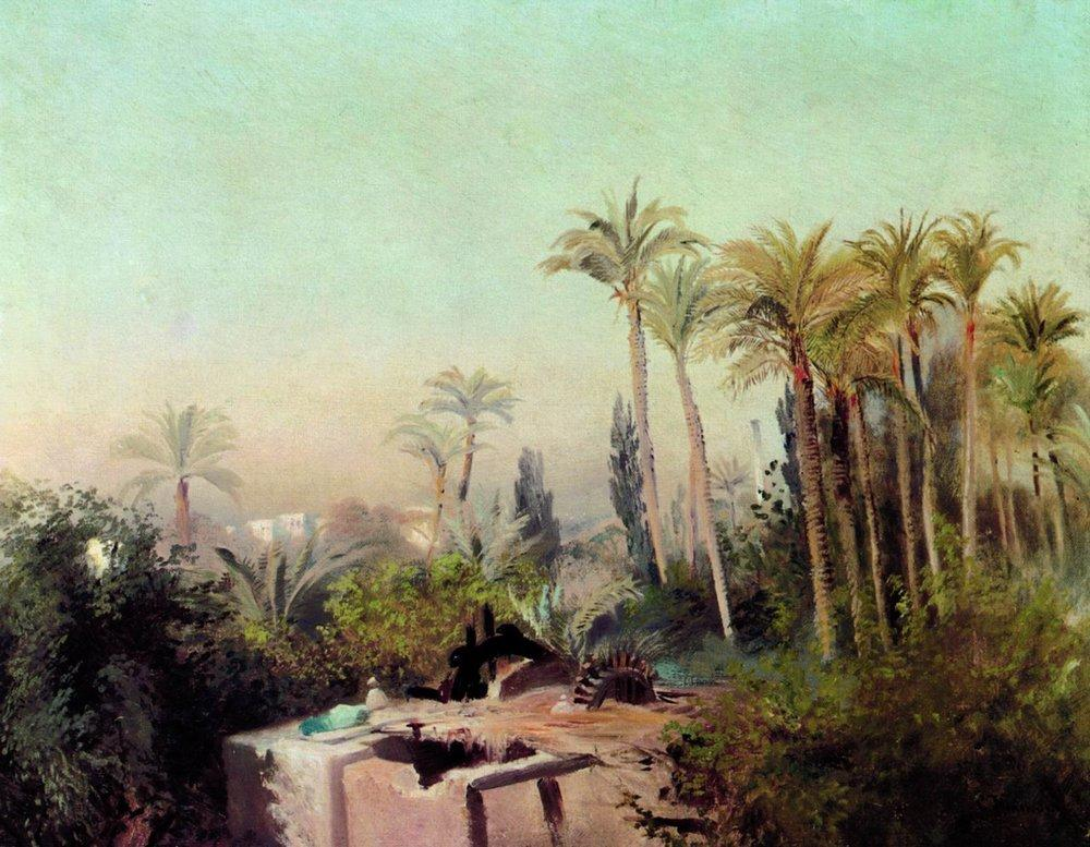 irrigation in an egyptian palm grove