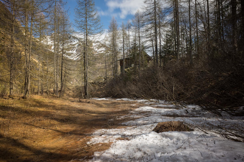 Трекинг около Alpe Cheggio