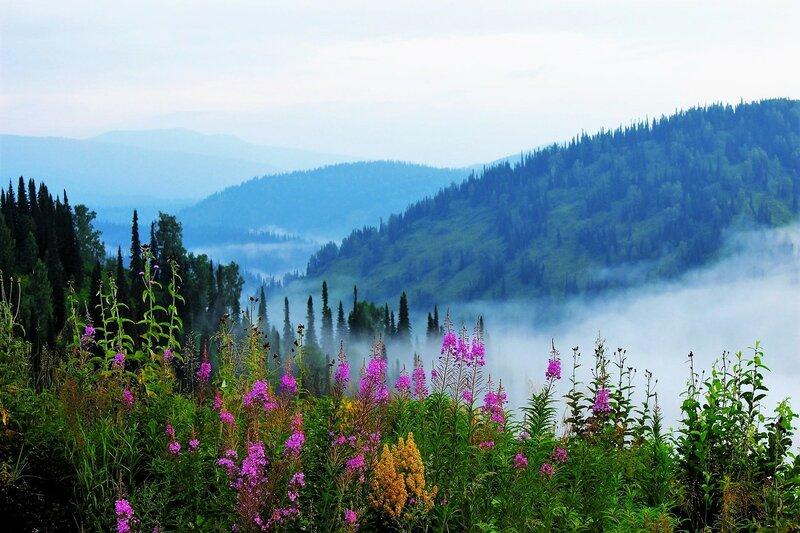 Июльское утро в горах