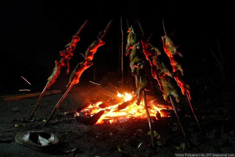 Темнеет в джунглях еще быстрее, чем в городе. Из развлечений — только сон в гамаке. Перед сном
