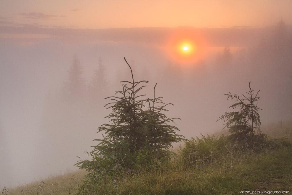 3. Над холмами клубились желтые, красные, розовые туманы. Ветер гонял их, то накрывая нас с гол