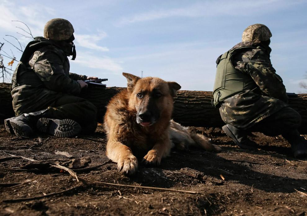 6. Украинцы тренируются в стрельбе из артиллерийского орудия около Житомира. (Фото Sergey Dolzh