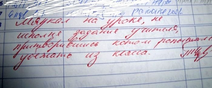 zapisi_v_dnevnikakh_21_foto_18.jpg