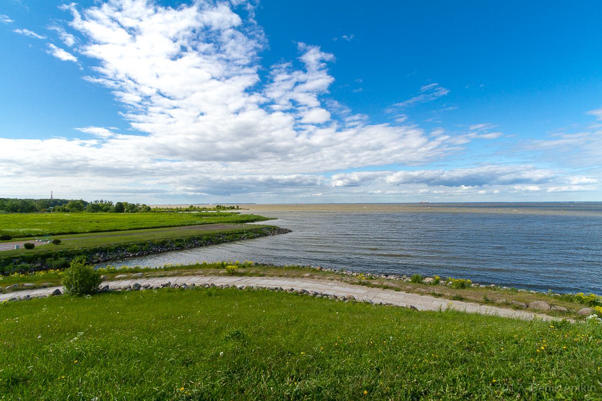 побережье финского залива фото 6