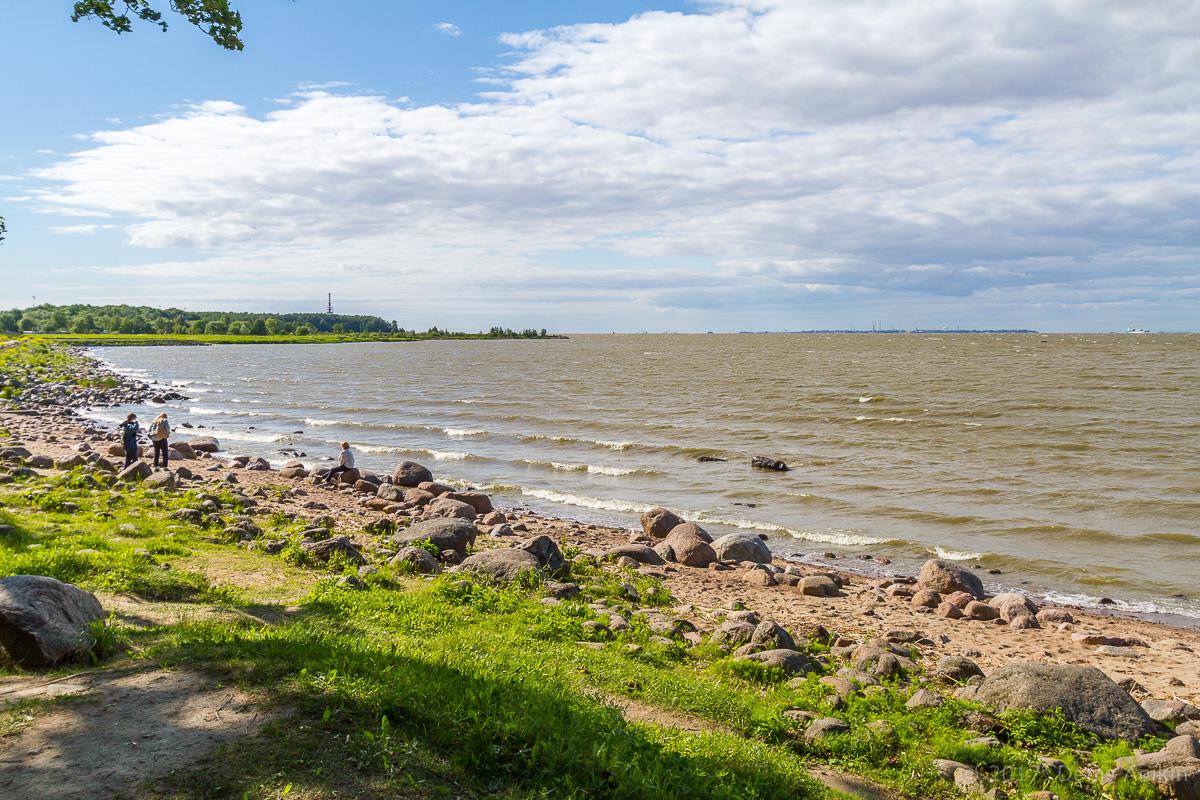 побережье финского залива фото 11
