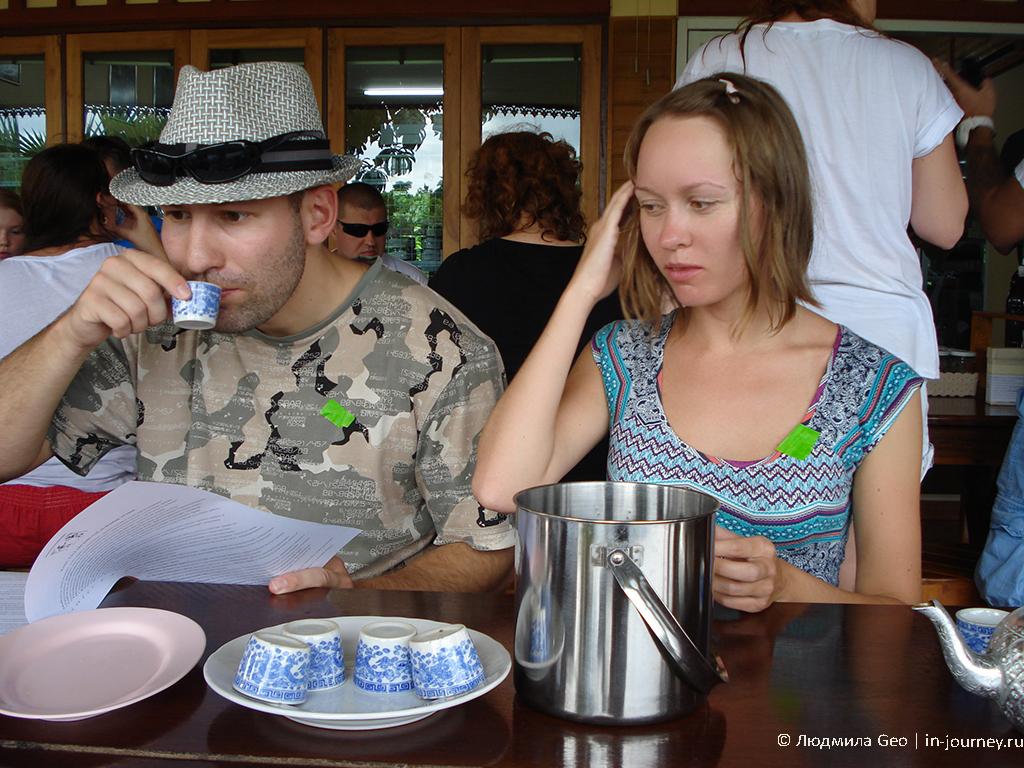 дегустация чая в таиланде