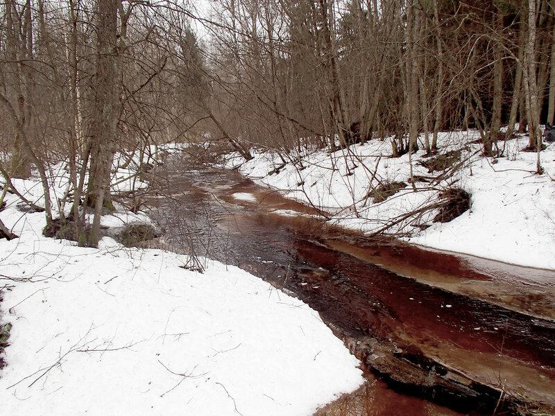 такт снег и ручей в лесу в марте