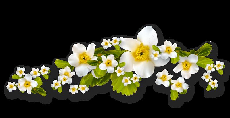 Весенне-летние (37).png
