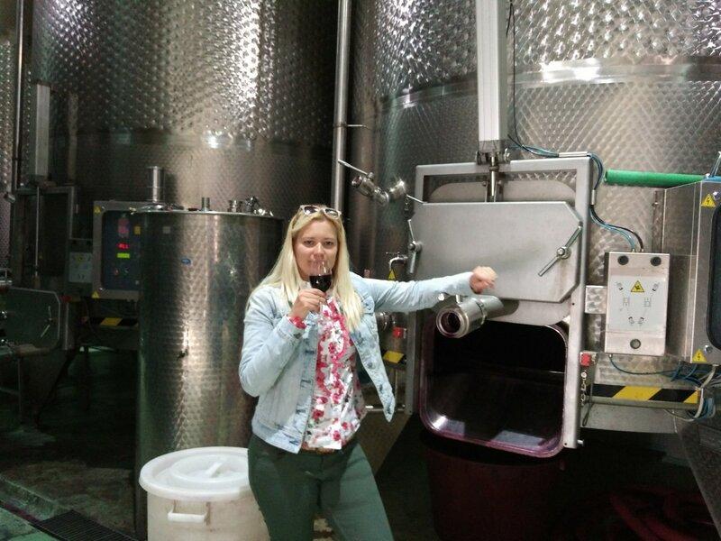 Винодельня в Тврдош