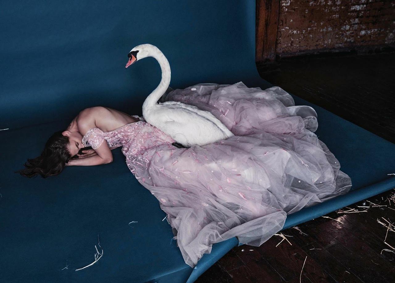Лебединая песня / Crista Cober фото Kristian Schuller
