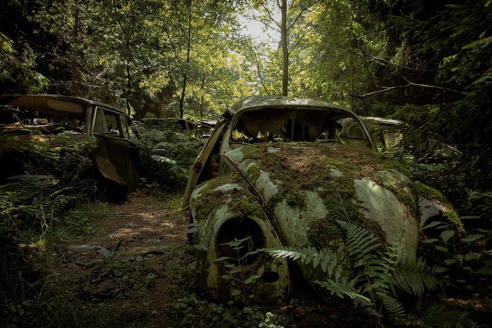 11. Настоящий загробный мир. (Фото Robert Kahl):