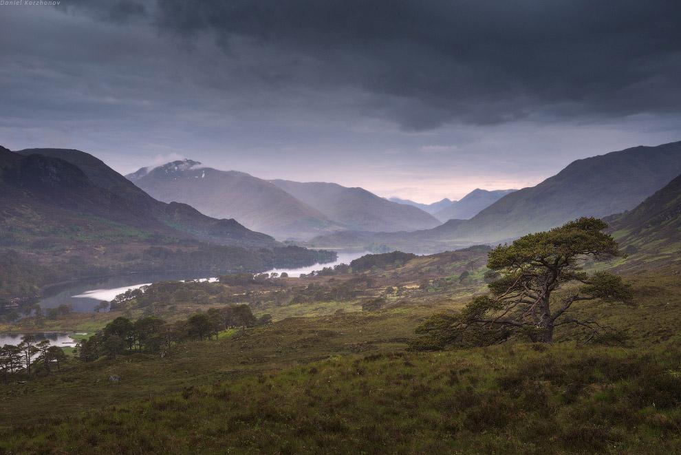 На островке, где кто-то устроил себе мирную шотландскую жизнь на озере Affric.
