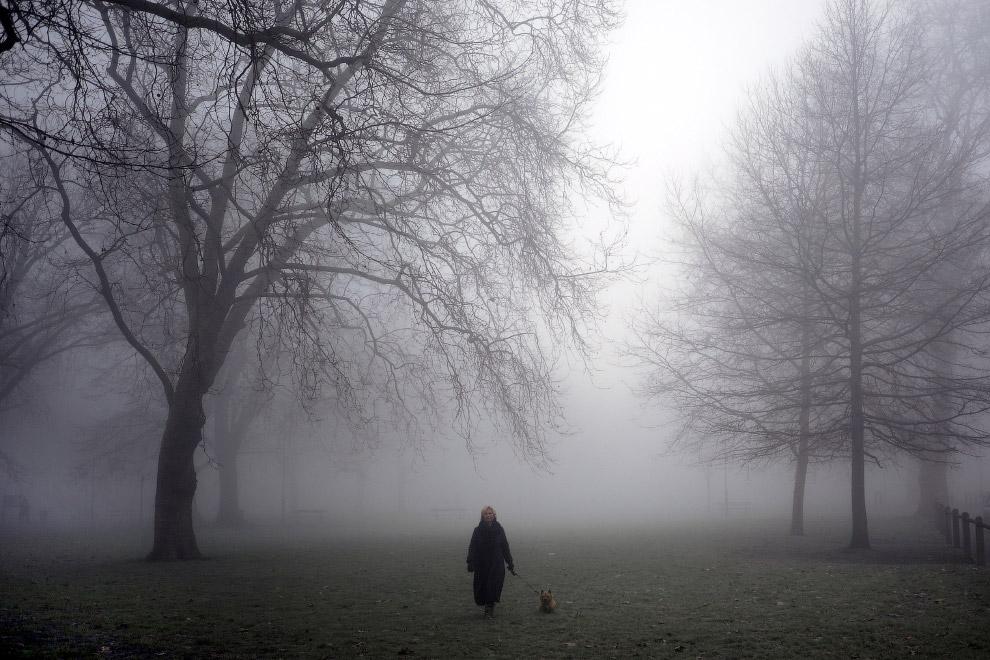 В России тоже есть туманы. Среднегодовое число дней с туманом в некоторых городах России: Москв