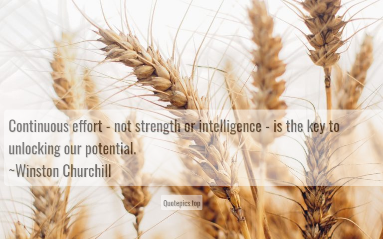 Continuous effort - not strength or intelligence - is the key to unlocking our potential. ~Winston Churchill