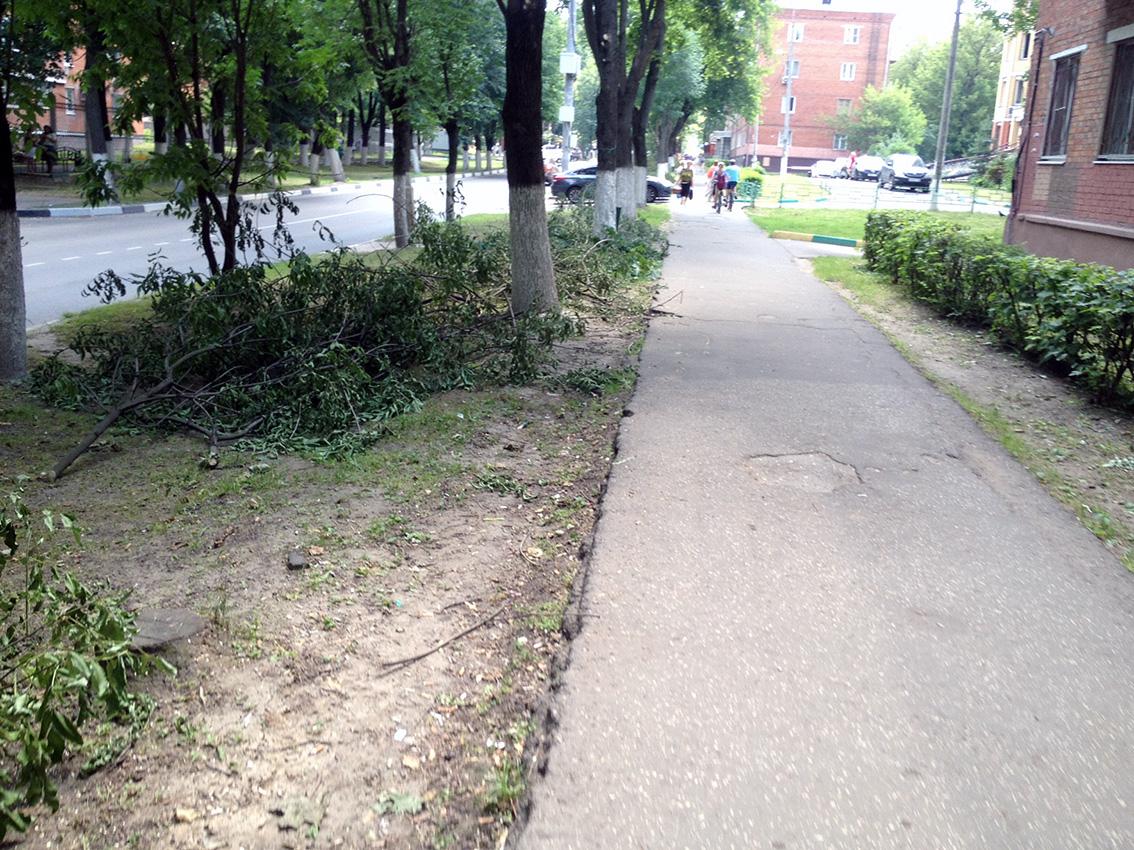 траву не сеят зато косят камни и песок.jpg