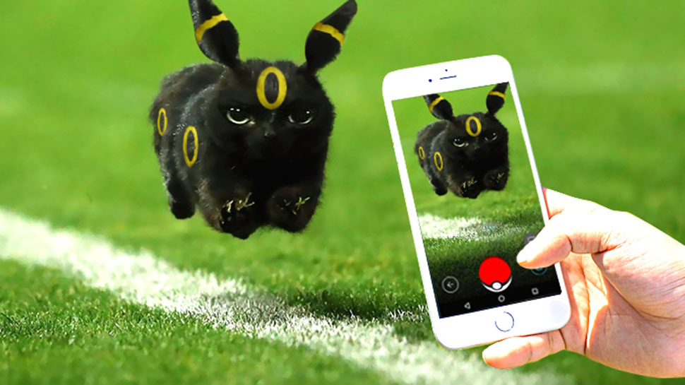 Кот в игре Pokemon Go.