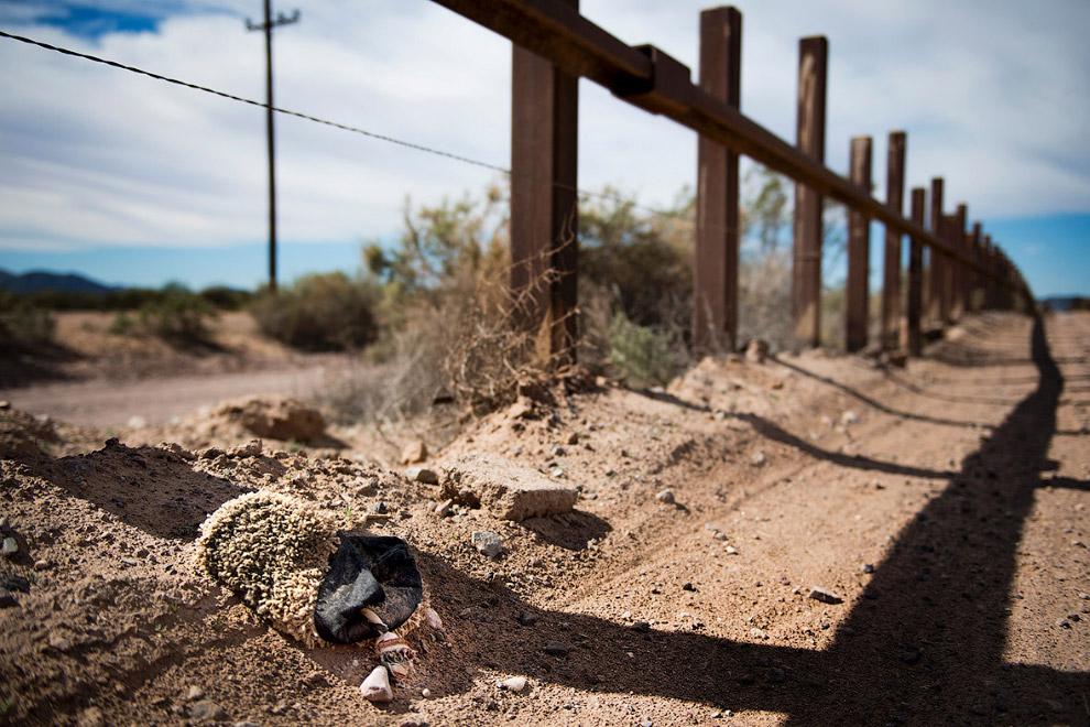 39. У Трампа могут быть проблемы со строительством стены на границе с Мексикой:  свойства ме