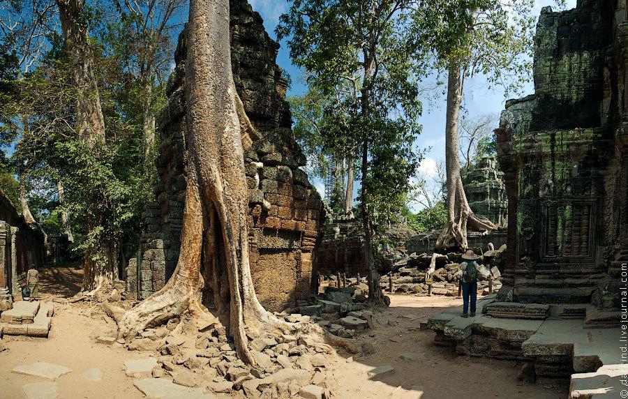 Помимо главных Ангкор Вата и Байона крайне рекомендуется к посещению очень выразительный храм Та Про