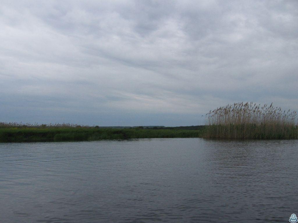 Устье Ворсклицы