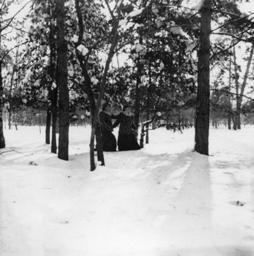 Прогулка в Петровско-Разумовское