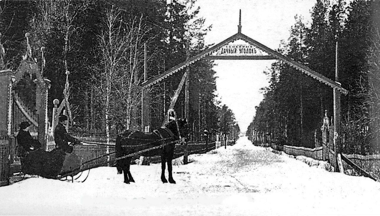 Окрестности Рыбинска. Семейный дачный уголок