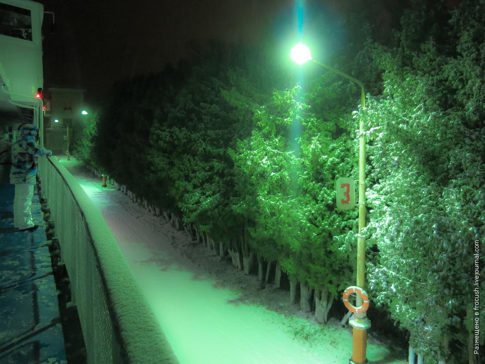 фотографии из снежного круиза