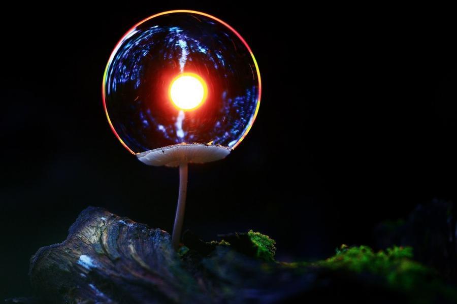 1. Шаровая молния Такого удивительного эффекта удалось достичь благодаря контровой подсветке мыльног