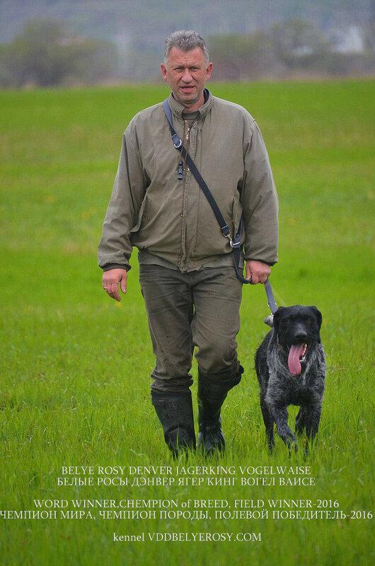 ГЕРМА ВОН ДЕР НЕБЕЛАУ  собака для охоты - Страница 4 0_18d422_1635f7b7_XL