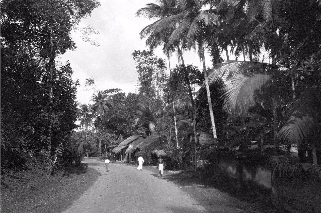 29. Дорога между Коломбо и Келанией