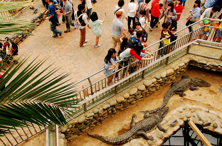 Замыкает десятку крупнейших зоопарков мира. Он и правда очень большой — по территории даже ходит авт