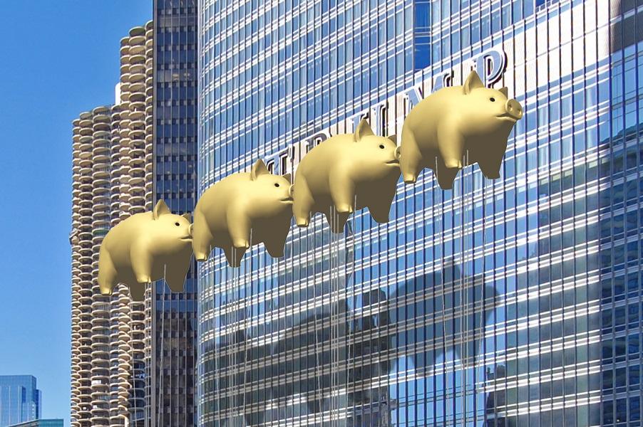 Золотые свиньи Трампа