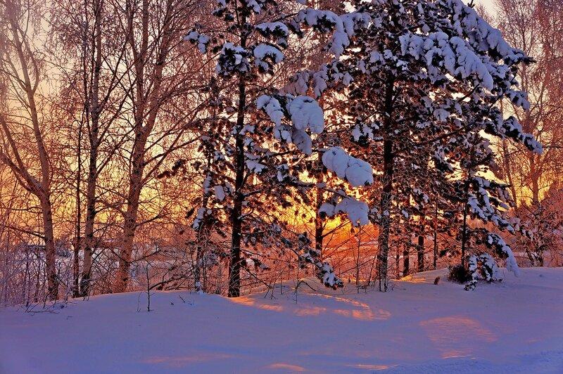 Вечер тихий и морозный..jpg