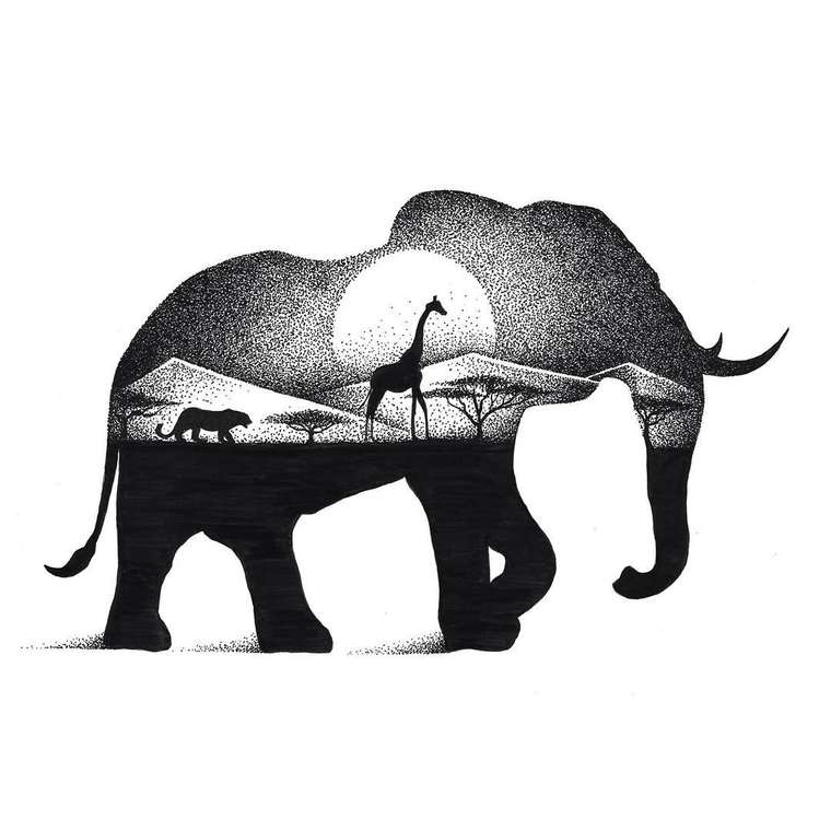 Double Exposure - The delicate illustrations by Thiago Bianchini