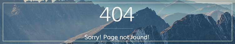 404 síðu logo
