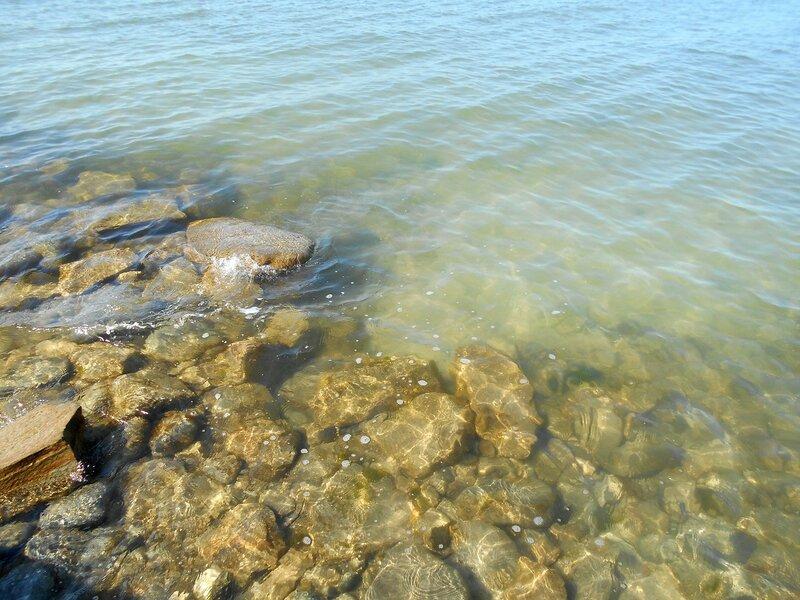 Прозрачность мартовской спокойной воды Азовского моря ... DSCN1245.JPG