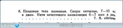 0_11fb7f_9c4c4f3c_orig.png