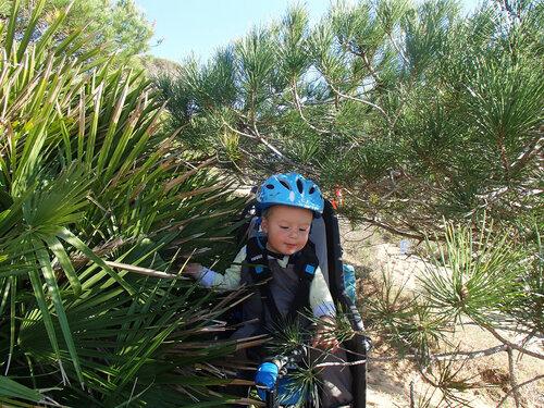 идем через кусты с ребенком в велокресле