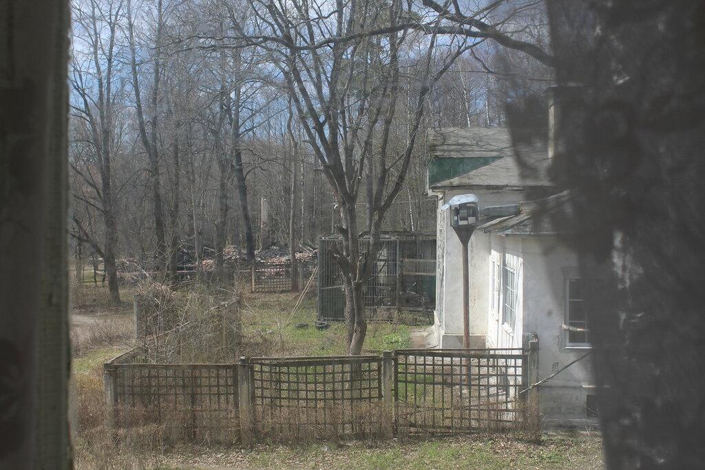 Колтуши. Вид из окна с веранды Старой лаборатории